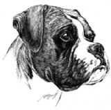 Boxer Dog Personalised Greetings Card
